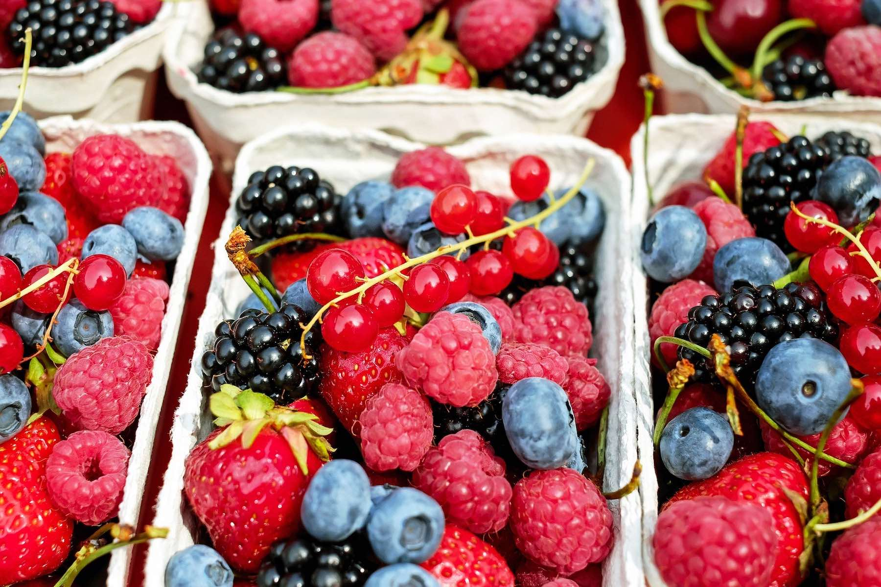 berries for brain's health